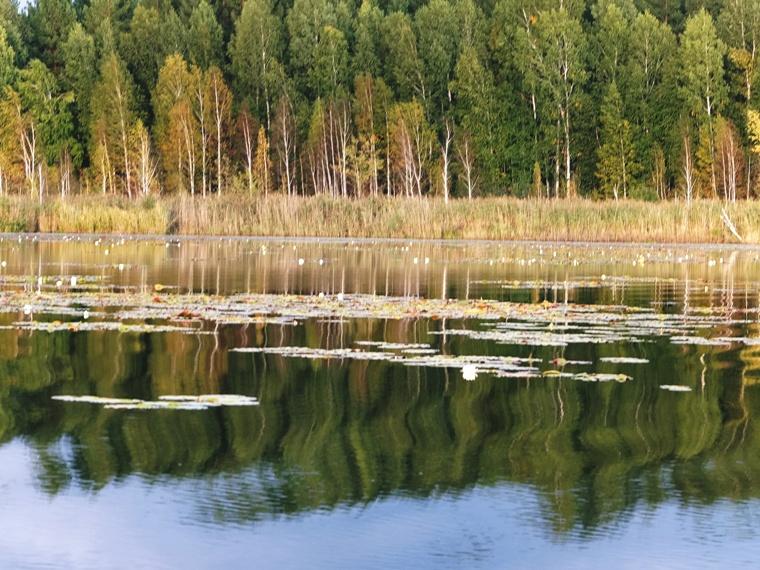 Туризм ульяновская область